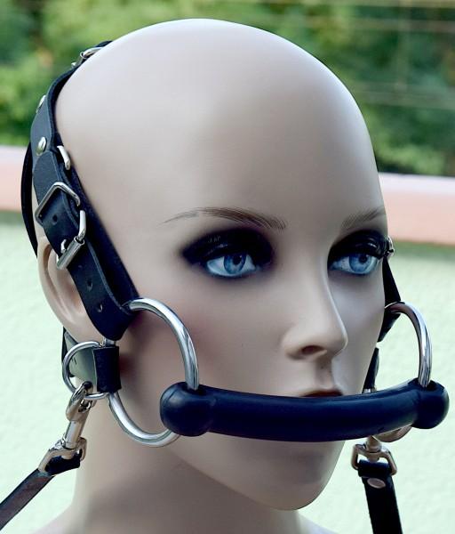 Kopfgeschirr Harness Trense mit Zügel
