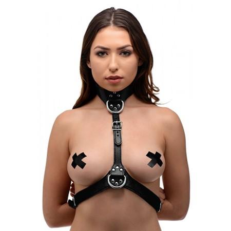 Damen Harness Brustgurt Gurtzeug